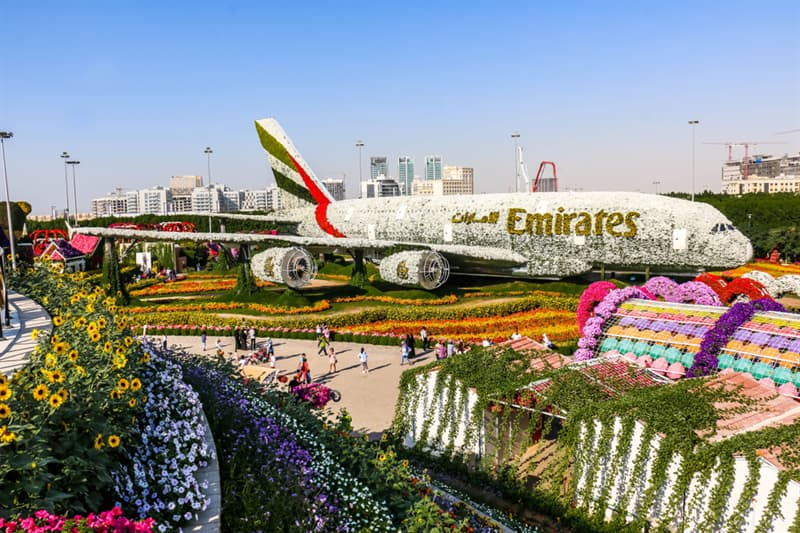 Nature Story: Dubai Natural Flower Garden: a man-made miracle #10