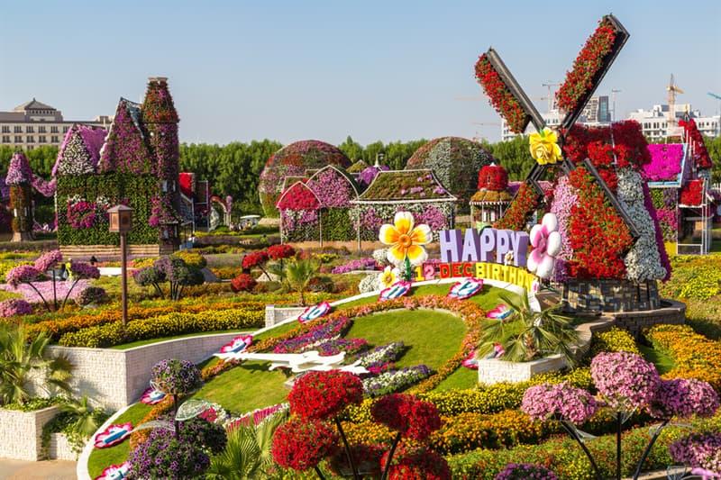 Nature Story: Dubai Natural Flower Garden: a man-made miracle #2