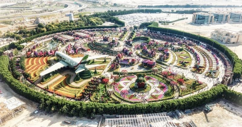 Nature Story: Dubai Natural Flower Garden: a man-made miracle #4