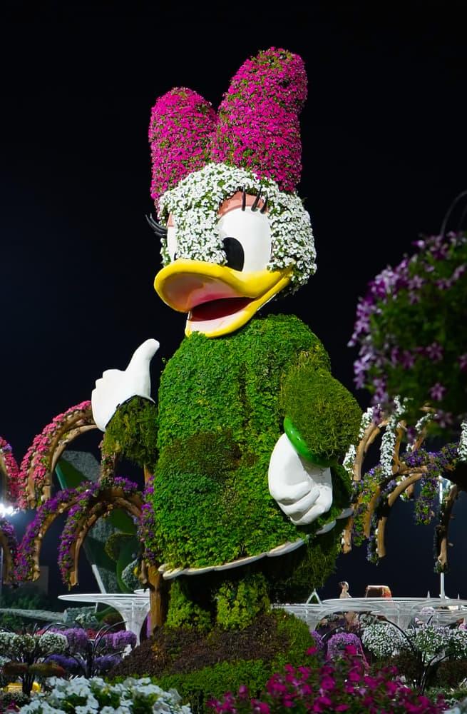 Nature Story: Dubai Natural Flower Garden: a man-made miracle #5