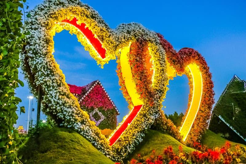 Nature Story: Dubai Natural Flower Garden: a man-made miracle #6