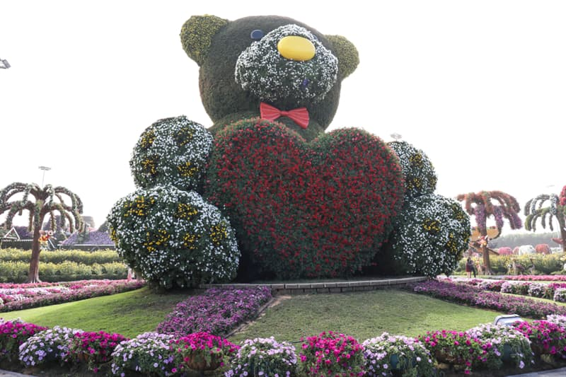 Nature Story: Dubai Natural Flower Garden: a man-made miracle #8