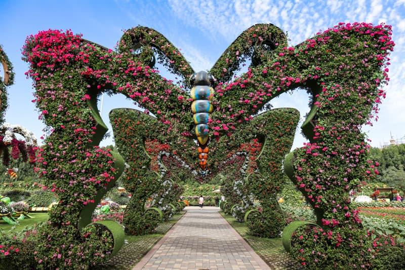 Nature Story: Dubai Natural Flower Garden: a man-made miracle #1