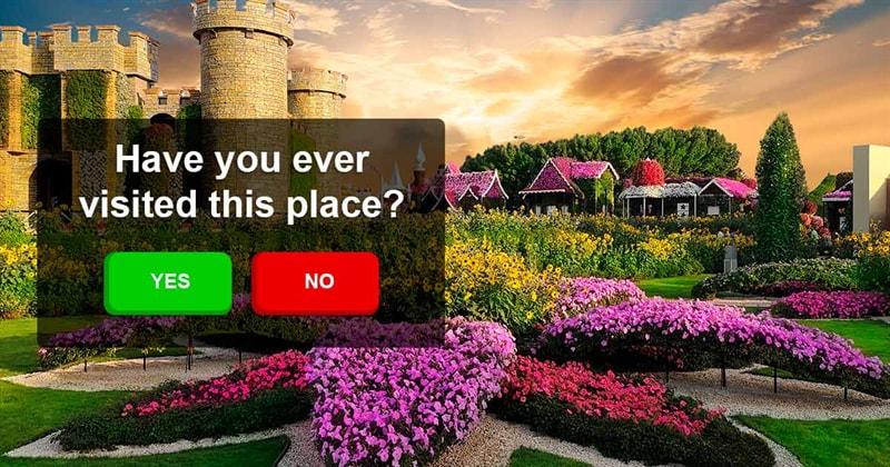 Nature Story: Dubai Natural Flower Garden: a man-made miracle