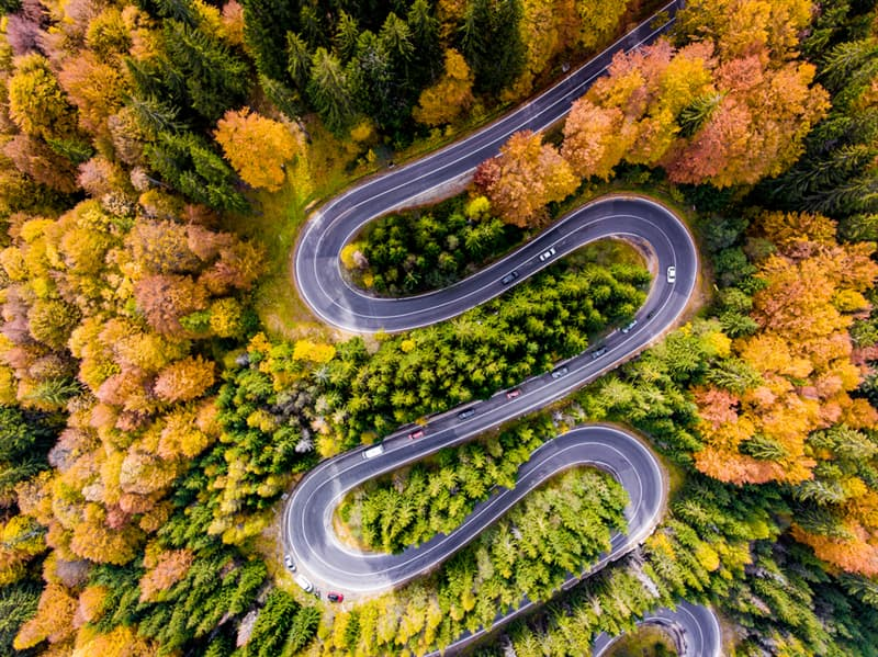 Nature Story: #1 Winding road surrounded by colourfull trees