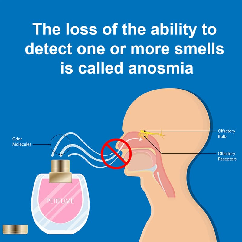 Science Story: The loss of the ability to detect one or more smells is called anosmia