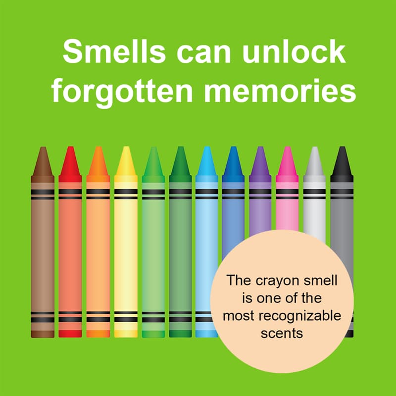 Science Story: Smells can unlock forgotten memories