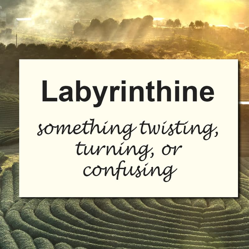 Culture Story: 10 of the most beautiful English words we should use more often #1