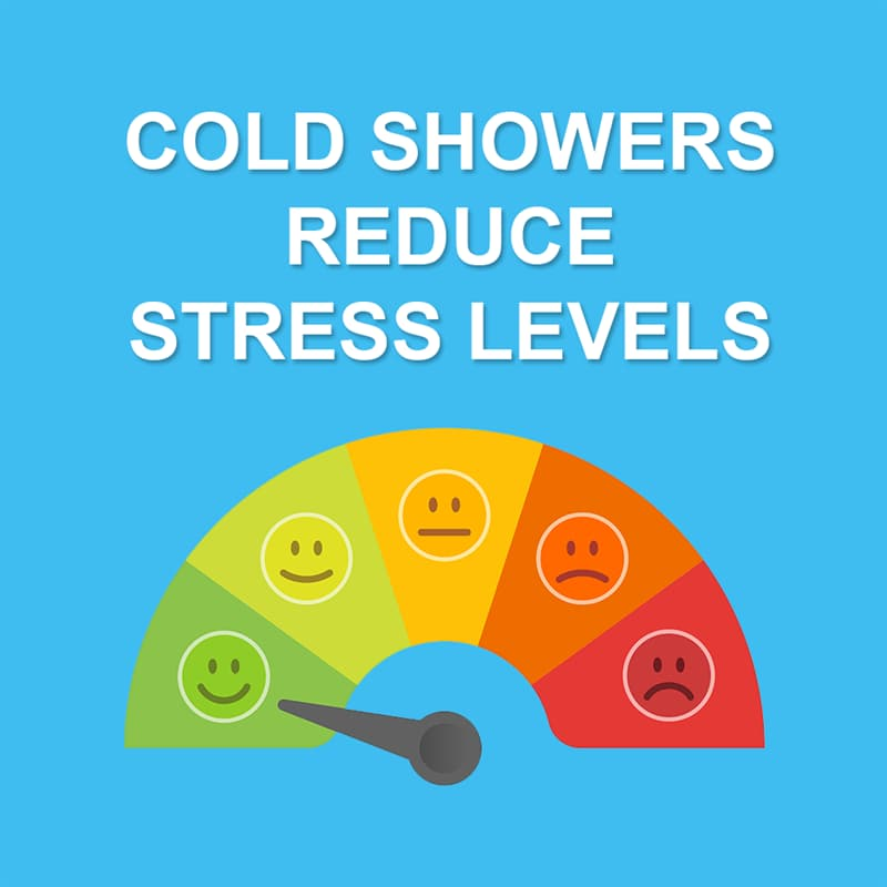 Science Story: It reduces stress levels