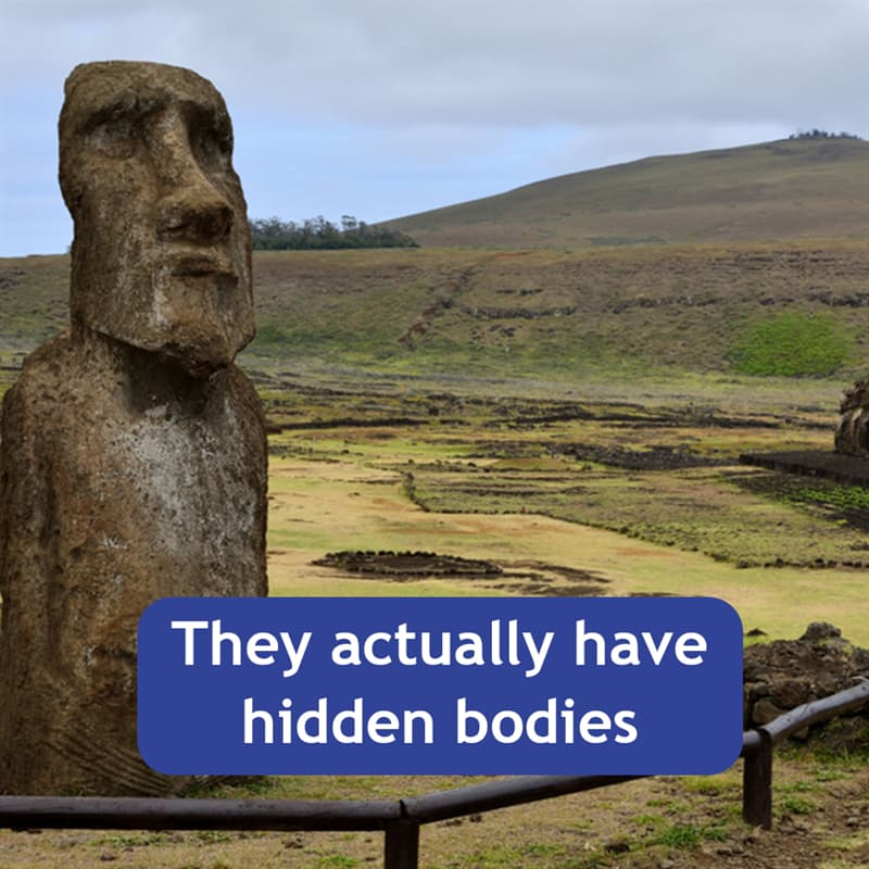 Geography Story: They actually have hidden bodies