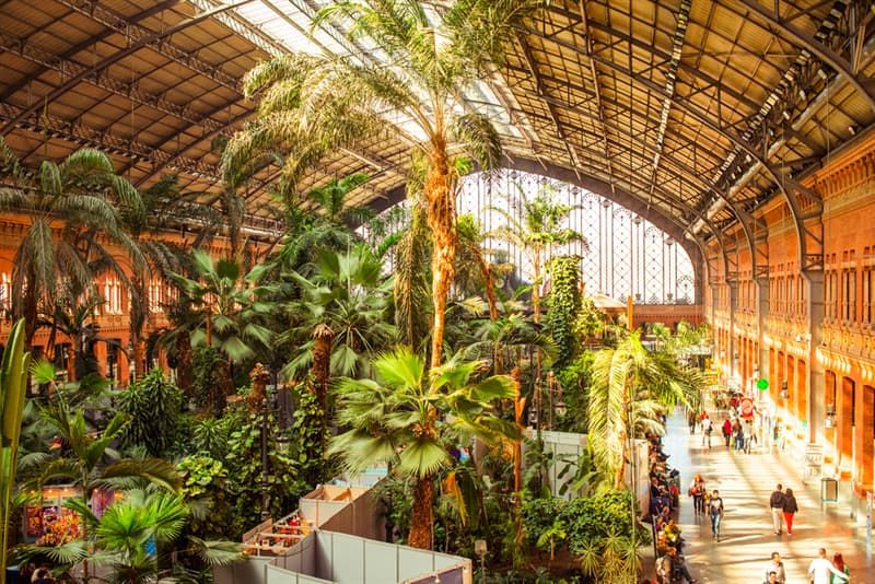 Geography Story: #2 Atocha station in Madrid, Spain