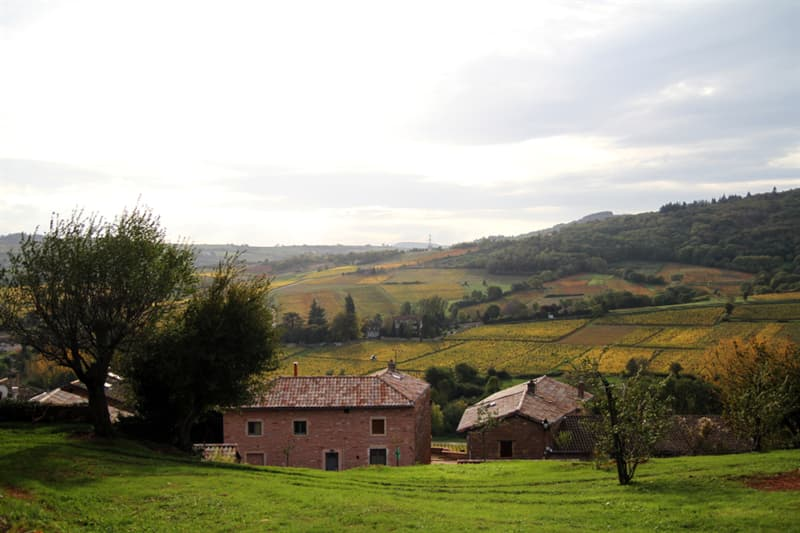 Geography Story: best places to visit if you are an introvert travel destinations Cluny France