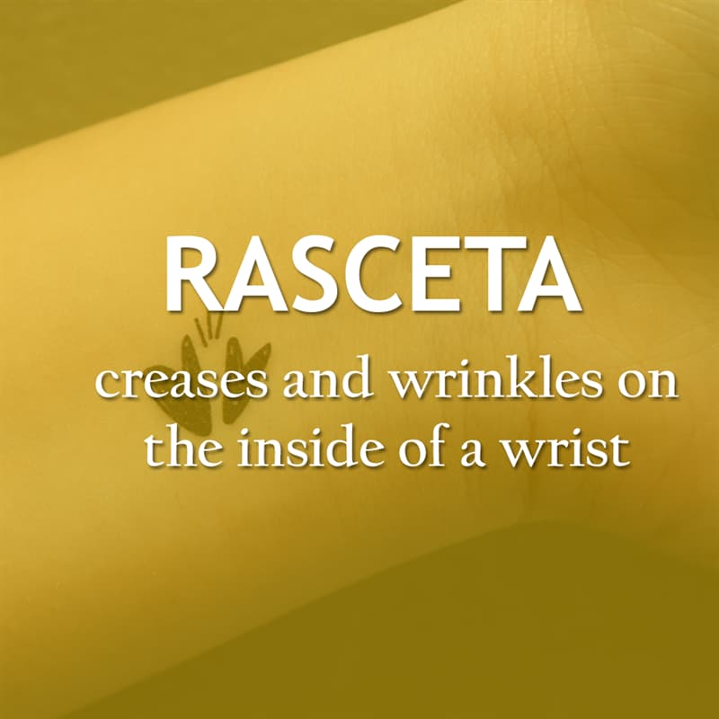 Culture Story: Creases and wrinkles on the inside of a wrist - rasceta