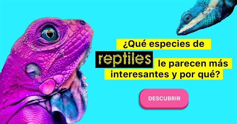Сiencia Historia: ¿Qué especies de reptiles le parecen más interesantes y por qué?