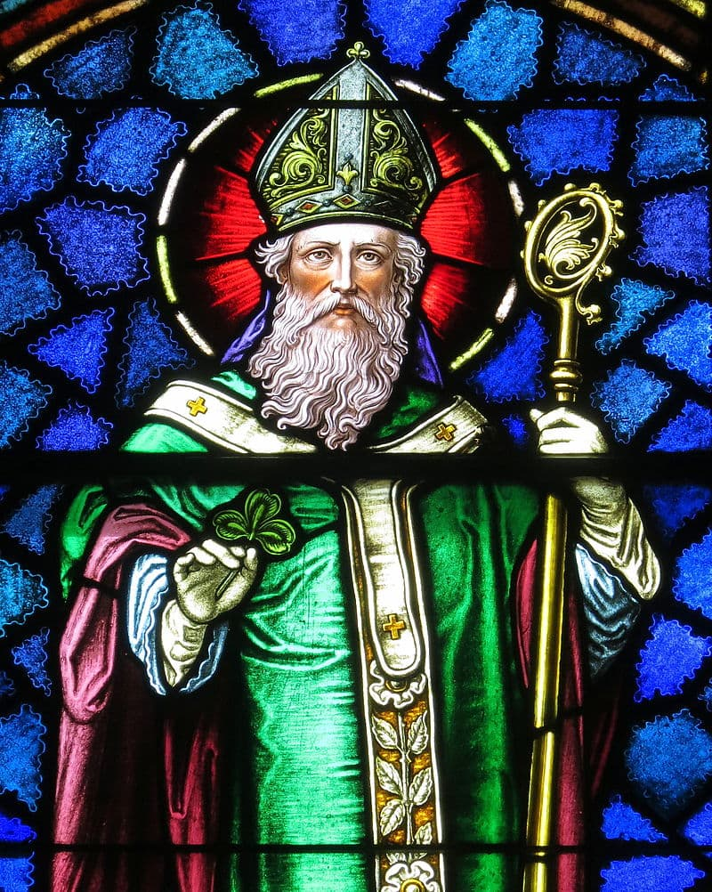 Culture Story: #2 The real-life Saint Patrick WASN'T Irish and DIDN'T drive all the snakes away from the country