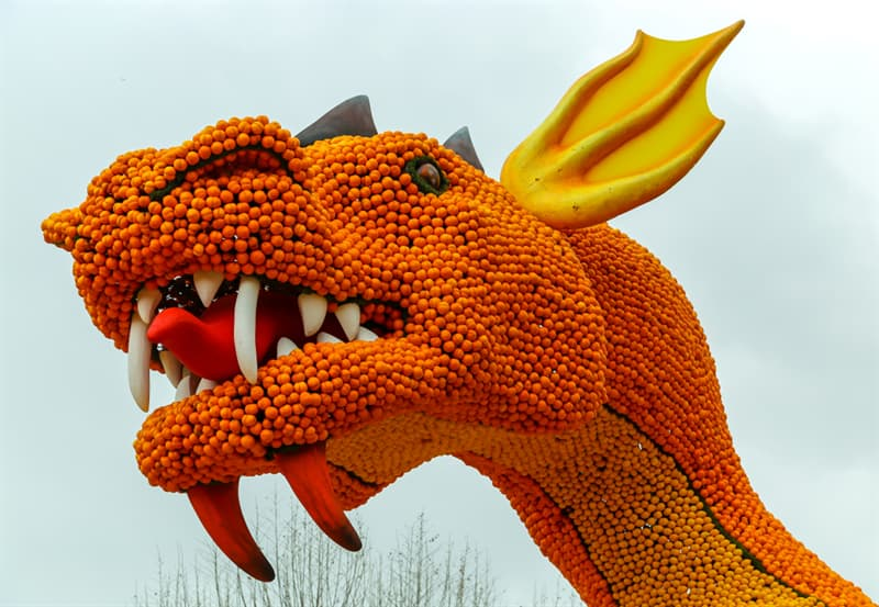 Geography Story: Menton lemon festival - 15 days in the fantasy world #6