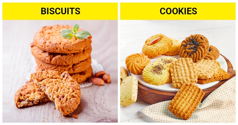 knowledge Story: The difference between biscuits and cookies