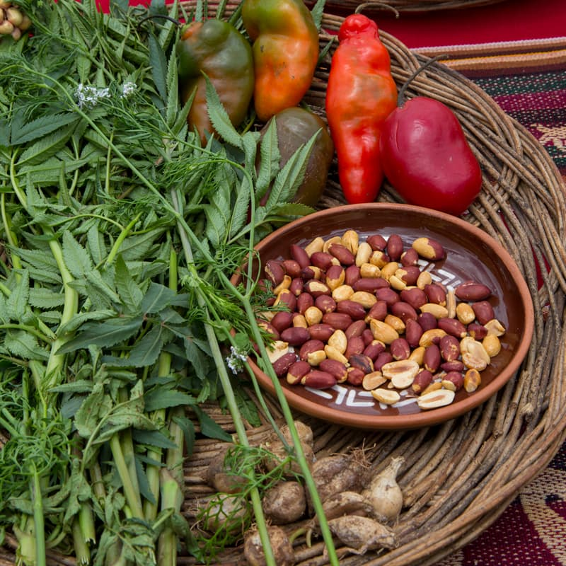 Culture Story: What did the Incas eat?