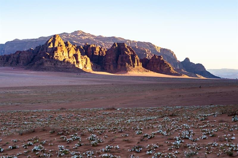 Nature Story: Wadi Rum desert