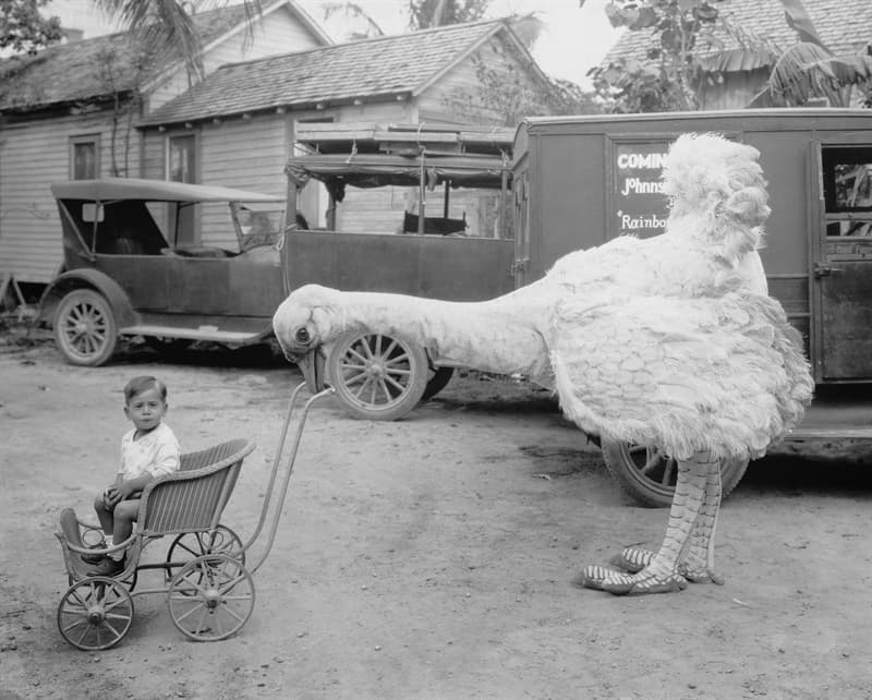 History Story: Funny vintage pictures