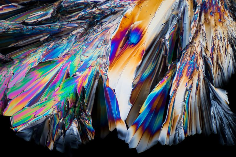 Nature Story: Sugar under thee microscope