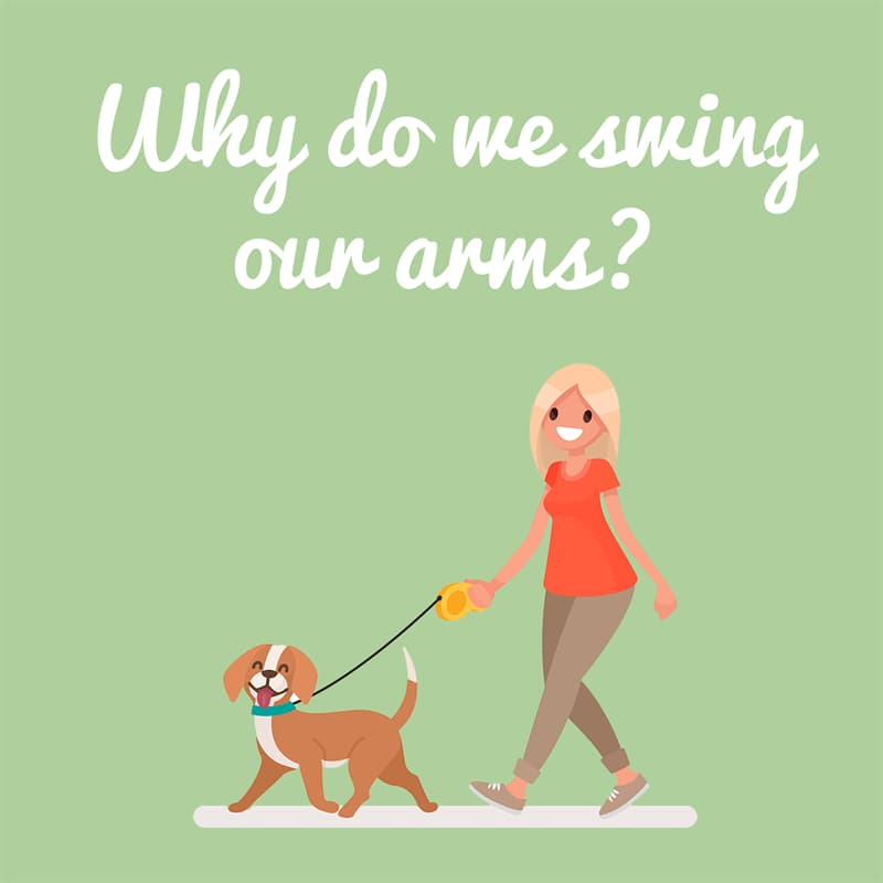Science Story: Why do we swing our arms while we walk?