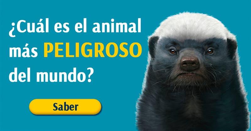 Naturaleza Historia: ¿Cuál es el animal más peligroso del mundo?
