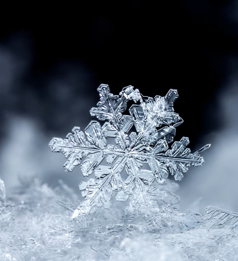 Science Story: #5 The largest recorded snowflake measured measured 15 inches (38 cm) wide