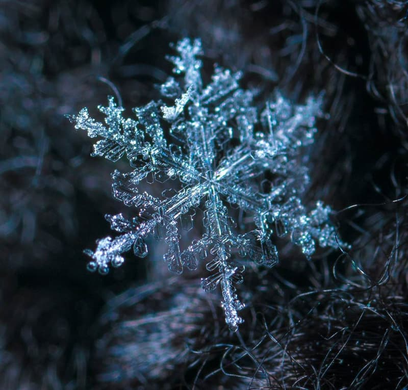 Science Story: #6 There are identical snowflakes