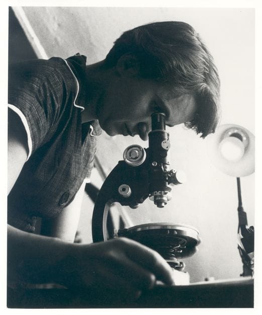 Science Story: facts about rosalind franklin