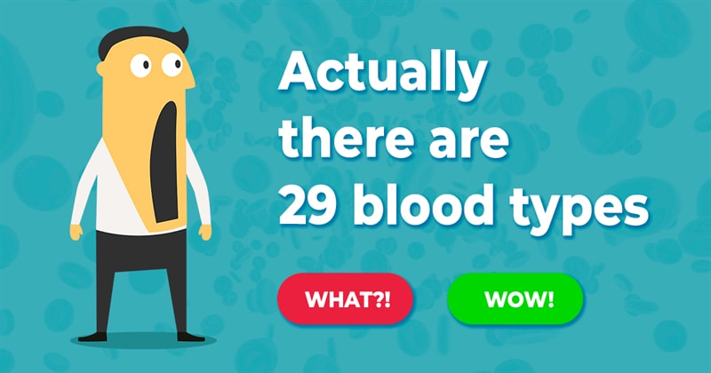 Science Story: 17 impressive facts about our bodies