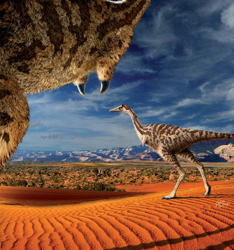 History Story: Linhenykus Cretaceous period Dinosaur facts unusual dinosaurs jurassic park history