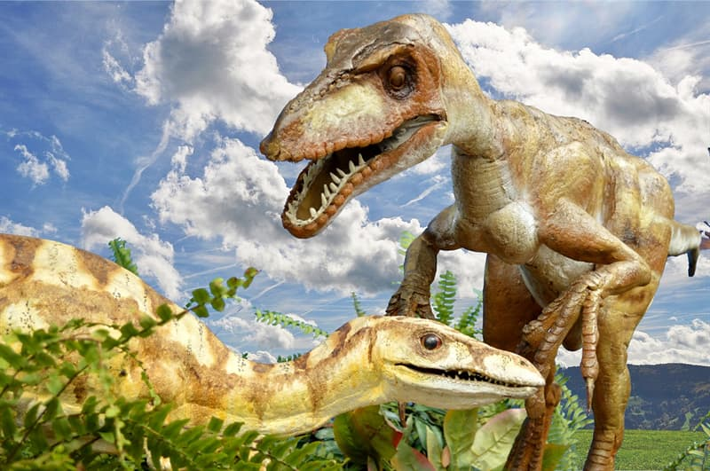 History Story: dinosaurs reptiles difference Dinosaur facts unusual dinosaurs jurassic park history