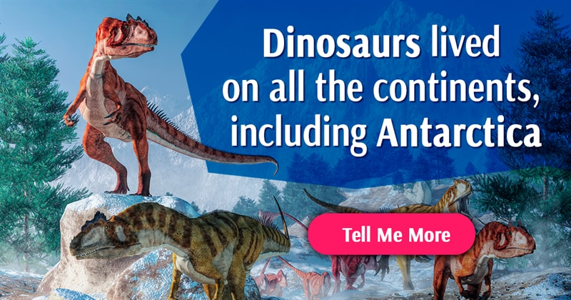 History Story: Dinosaur facts you've probably never heard before