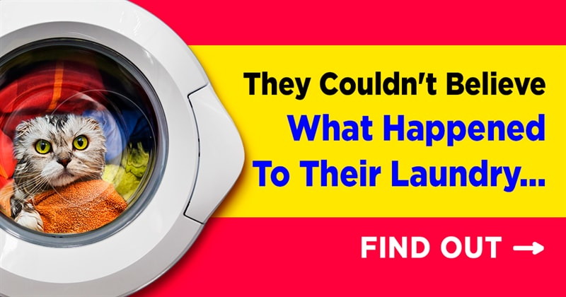 funny Story: 15 stories when the laundry went wrong