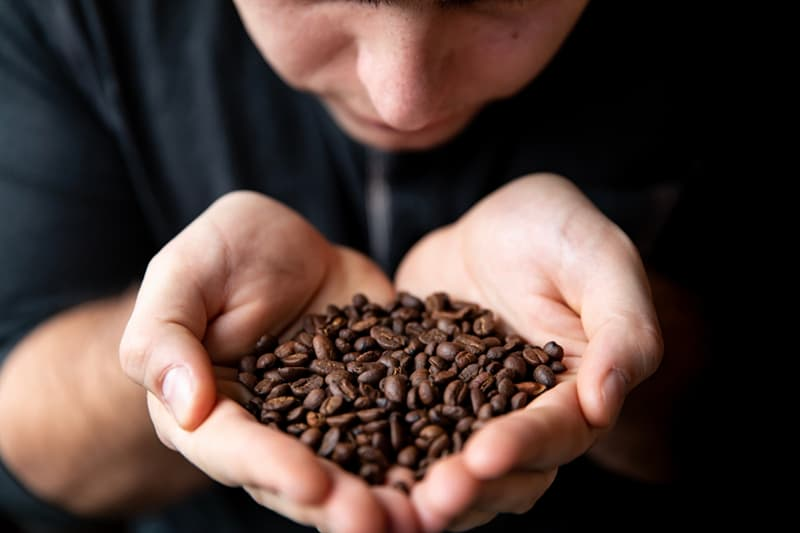 Society Story: coffee lovers life hacks coffee addicts cooking Eliminate lingering odors