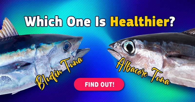 Science Story: 3 healthy fish to eat more often and 3 to avoid