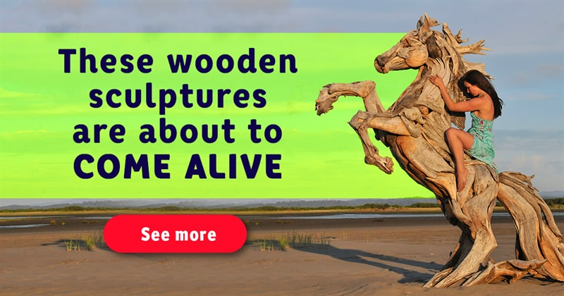 art Story: 9 incredible driftwood art sculptures you must see