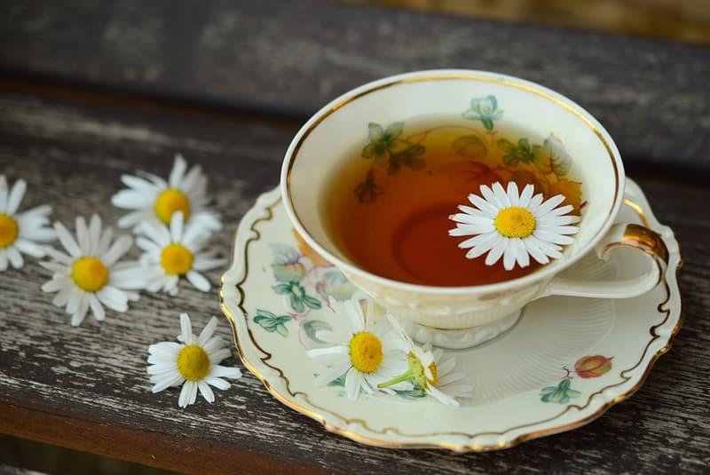 Science Story: #3 Tea