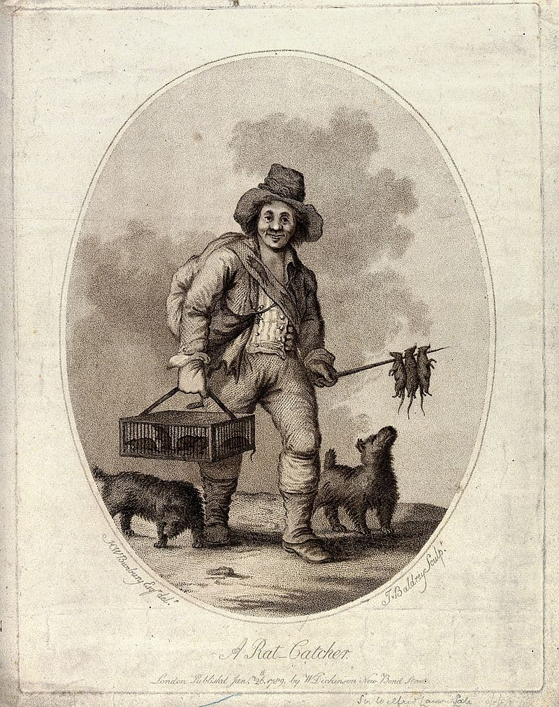 History Story: #4 Manual rat catcher