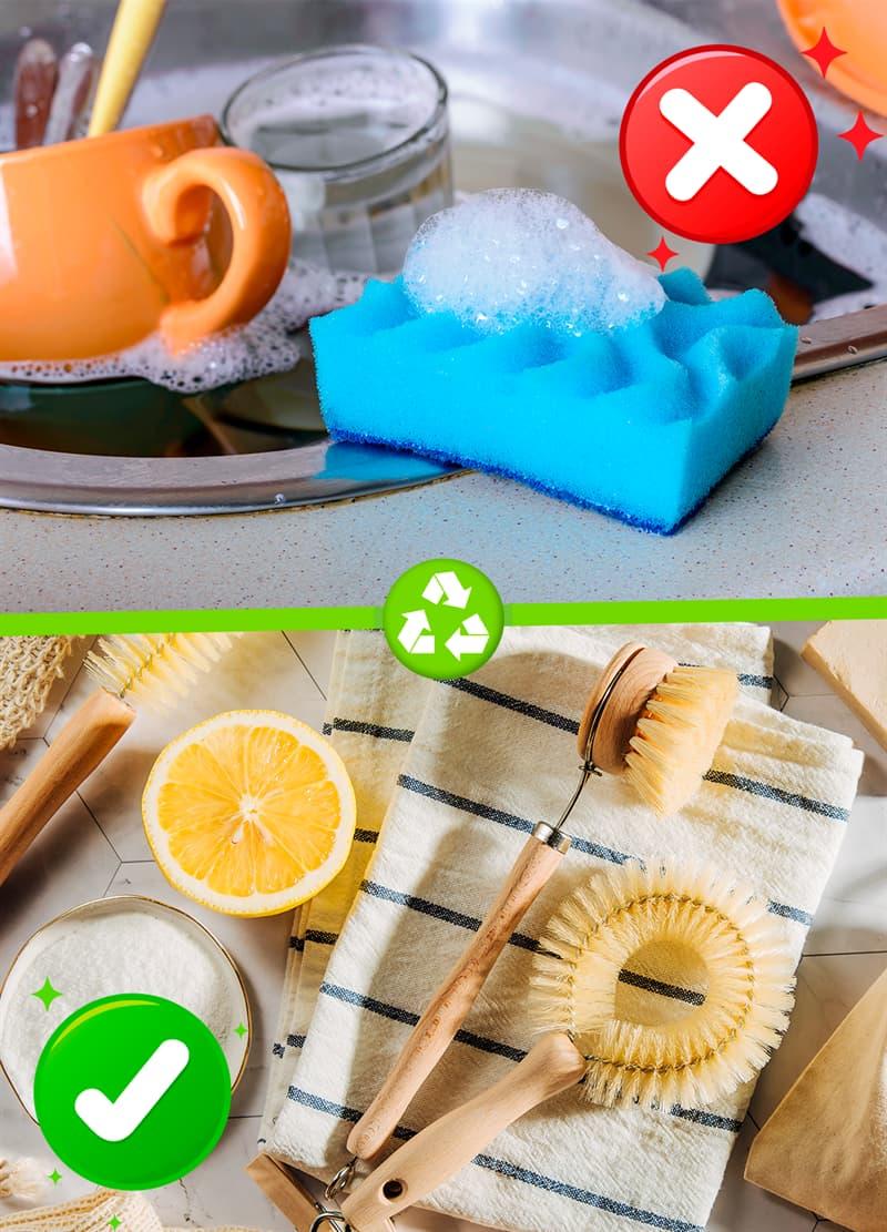Science Story: #1 Kitchen sponges