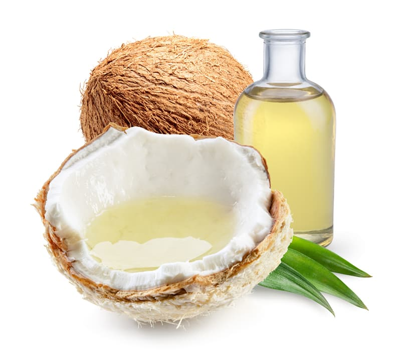 Nature Story: #3 Coconuts have important medical properties