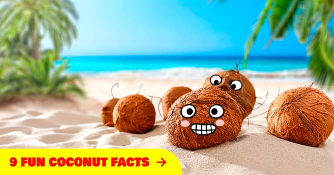 Nature Story: 9 amazing facts about coconuts