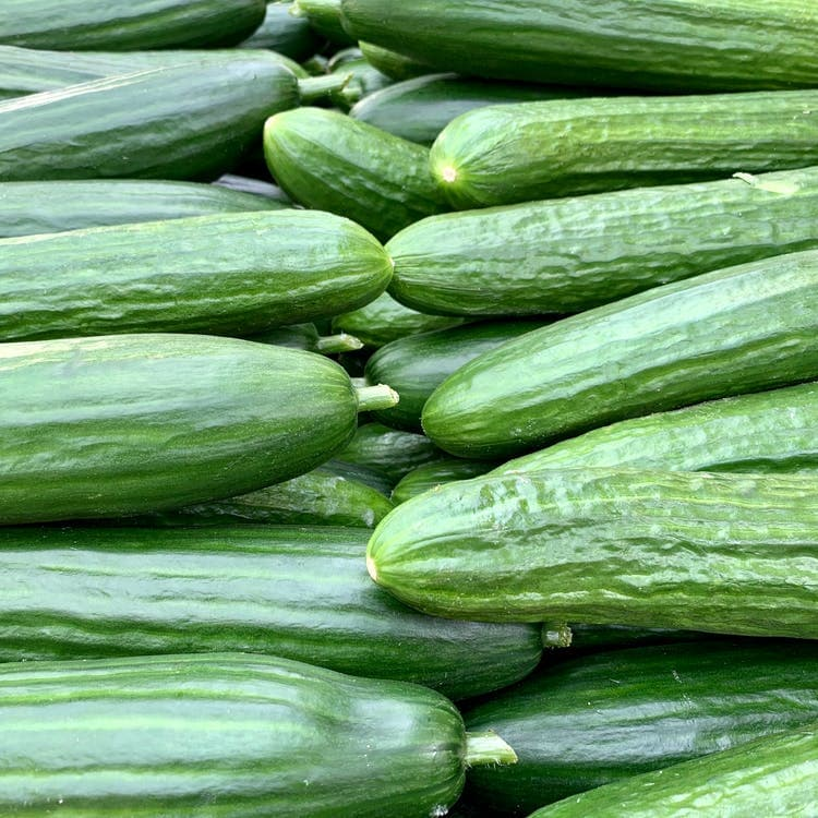 Culture Story: #2 The CUCUMBER is a fruit