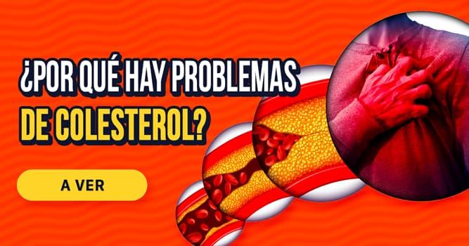 Salud Historia: ¿Por qué hay problemas de colesterol?