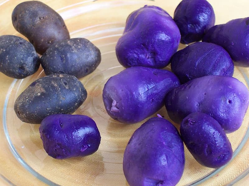 Nature Story: #5 Potatoes vitelotte are purple in color