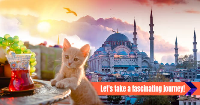 Geography Story: 12 photos of Istanbul to make you fall in love with Turkey