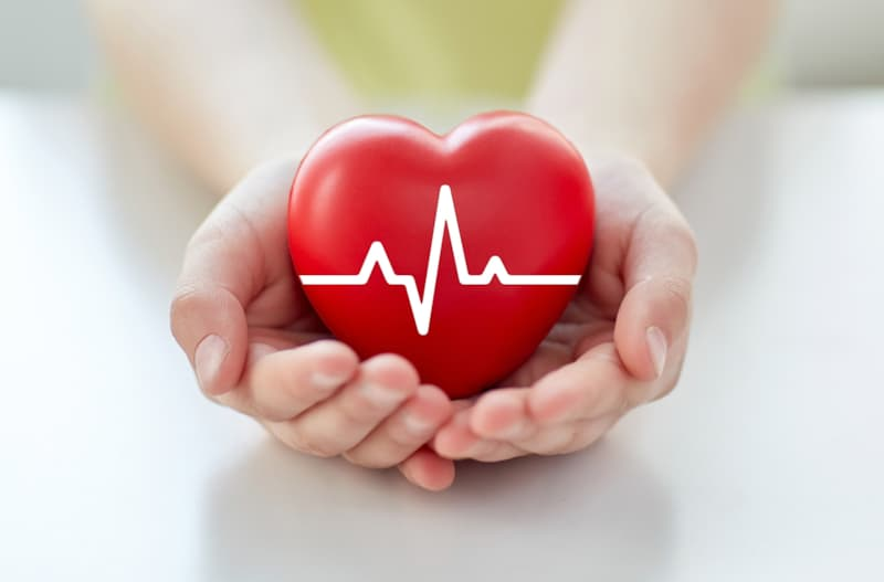 Science Story: #1 The average heart beats millions of times per year, 115,000 times per day and 80 times per minute!