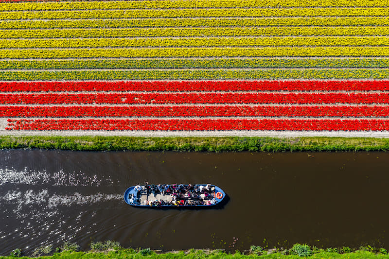 Geography Story: #10 Lastly, the absolutely captivating aerial view of a tulip field beside a canal captured close to Keukenhof, Netherlands.