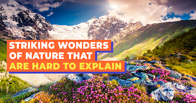 Nature Story: 5 amazing tricks of nature
